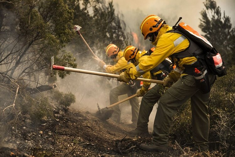 Bush fire fighting tools and equipment